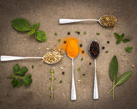 Seleção das ervas e das especiarias em colheres velhas do metal no vint da obscuridade da telha Imagens de Stock