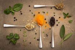 Seleção das ervas e das especiarias em colheres velhas do metal no vint da obscuridade da telha Fotos de Stock Royalty Free