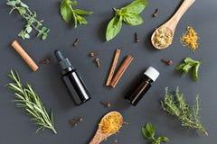 Seleção de óleos essenciais e de ervas em um fundo escuro foto de stock