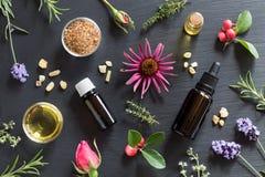 Seleção de óleos essenciais e de ervas em um fundo escuro fotografia de stock royalty free