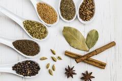 Seleção de sementes e de especiarias inteiras fotografia de stock royalty free