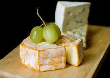 Seleção do queijo azul e do camembert Fotos de Stock Royalty Free