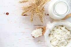 Seleção dos produtos láteos e do trigo imagem de stock royalty free