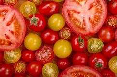 Seleção dos tomates Foto de Stock Royalty Free