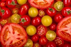 Seleção dos tomates Fotos de Stock