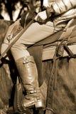 Sele acima em Fort Worth Texas Imagens de Stock Royalty Free