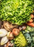 Selección de las verduras: ensalada, romanesco, achicoria, witlof, endibia, cebolla, setas, colinabo Foto de archivo libre de regalías