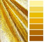 Selección de oro de la carta de color Imagenes de archivo