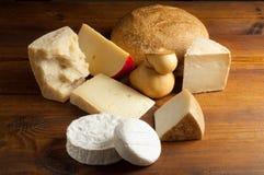 Selección de queso Foto de archivo libre de regalías