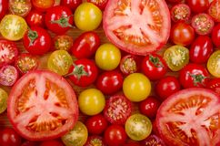 Selección de tomates foto de archivo