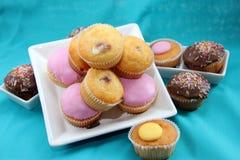 Selección de tortas de hadas Foto de archivo