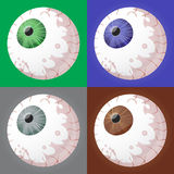 Selección del globo del ojo Imagen de archivo