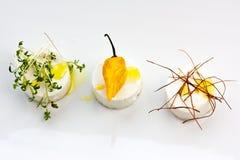 Selección del queso Foto de archivo