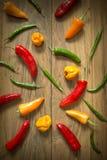 Selección fresca de la pimienta de chiles Fotografía de archivo