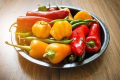 Selección fresca de la pimienta de chiles Fotos de archivo libres de regalías