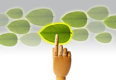 Select Green Royalty Free Stock Photo