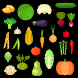Selected healthful fresh vegetables flat icons Stock Photography