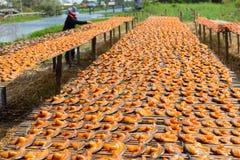 Selecteer nadruk van droge gezouten vissen onder de zon tijdens fishi Royalty-vrije Stock Fotografie