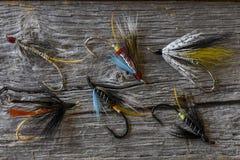 Selectie van Atlantische zalmvliegen stock afbeelding