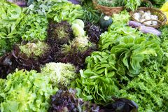Selectie van groene en verse groenten uit de markt van een landbouwer royalty-vrije stock afbeeldingen