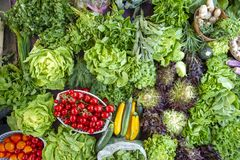 Selectie van groene en verse groenten uit de markt van een landbouwer royalty-vrije stock fotografie