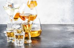 Selectie van harde sterke alcoholische dranken en geesten in grote glazen en klein geschoten glas in assortiment: wodka, cognac,  royalty-vrije stock foto's