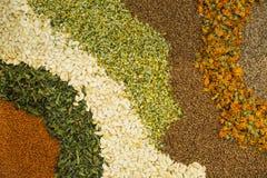 Selectie van kruiden, kruiden en aromatische planten stock fotografie