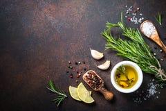 Selectie van kruiden en kruiden op donkere roestige tablel Royalty-vrije Stock Foto's