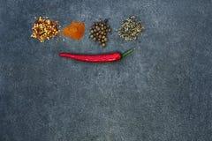 Selectie van kruiden, herbsl op zwarte steenlijst Ingredi?nten voor het koken De achtergrond van het voedsel royalty-vrije stock afbeeldingen