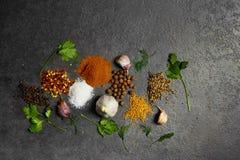 Selectie van kruiden, herbsl op zwarte steenlijst Ingredi?nten voor het koken De achtergrond van het voedsel stock fotografie