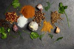 Selectie van kruiden, herbsl op zwarte steenlijst Ingredi?nten voor het koken De achtergrond van het voedsel royalty-vrije stock afbeelding