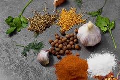 Selectie van kruiden, herbsl op zwarte steenlijst Ingredi?nten voor het koken De achtergrond van het voedsel royalty-vrije stock fotografie