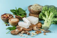 Selectie van vegetarische eiwitbronnen - concent gezonde voeding Stock Afbeelding