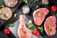 Selectie van verscheidene types van rood vlees royalty-vrije stock afbeelding