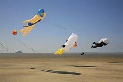 Selectie van vliegers het vliegen Stock Fotografie