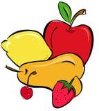 Selectie van vruchten Stock Illustratie