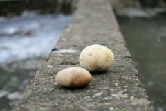 Selectieve nadruk Rotsen stenen Stock Foto