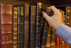 Selecting a Book Stock Image