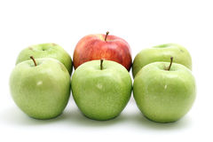 Selection of apples. Isolated on white Stock Photography