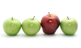 Selection of apples. Isolated on white Stock Photos