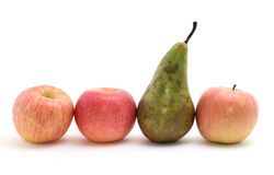 Selection of apples Royalty Free Stock Photography