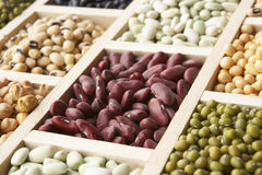 Selection Of Beans Royalty Free Stock Photos
