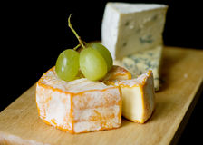 Selection of blue cheese and Camembert Royalty Free Stock Photos