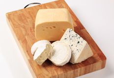 Selection of cheeses Stock Images