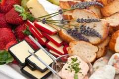 Selection of cheeses and breads Royalty Free Stock Image