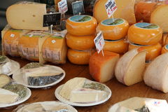 A Selection of Cheeses Royalty Free Stock Photography