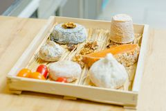 Selection cheeses on tray Stock Photography