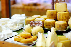 Selection of cheeses on typical italian farmer market Stock Photos