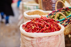 Selection of chili peppers on a traditional Moroccan market Royalty Free Stock Photos