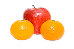 Selection of citruses Royalty Free Stock Photo